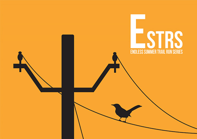 ESTRS 2019 Poster Mockup 920PX X 600PX 2-18-19